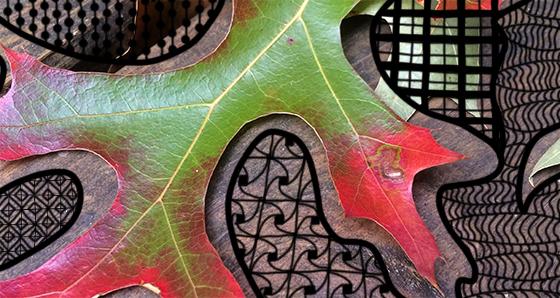 Doodle-Leaf